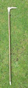 show cane[170]